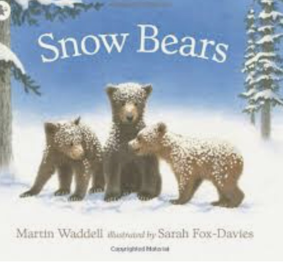 A bedtime story with Mrs Scholes- Snow Bears