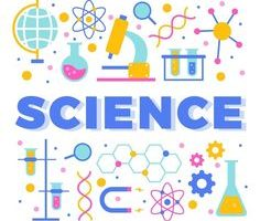Year 5 – Science Experiments