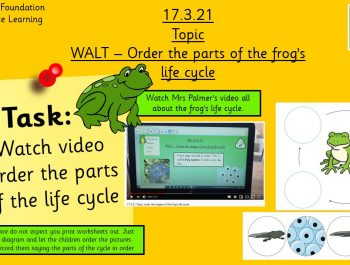 17.3.21 Knowledge & Understanding the World: The frog's life cycle